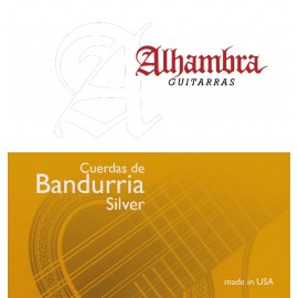 D'Addario set of strings for bandurria